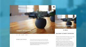 Types of blog theme